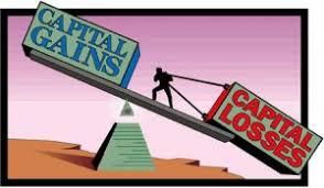 Understanding Capital Gains ( or Losses)